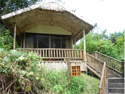 engagi-lodge-bwindi-2