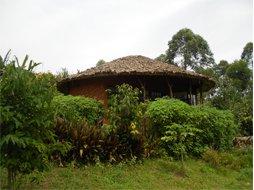 mahogany-springs-bwindi2